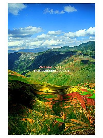 由于丘陵高低不同,具有很强的立体感,立体的山丘,多变的色调产生立体