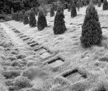 私人墓地图片欣赏