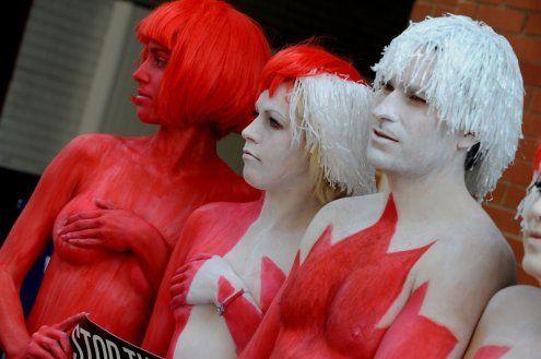 动物保护组织裸体抗议杀海豹(组图)