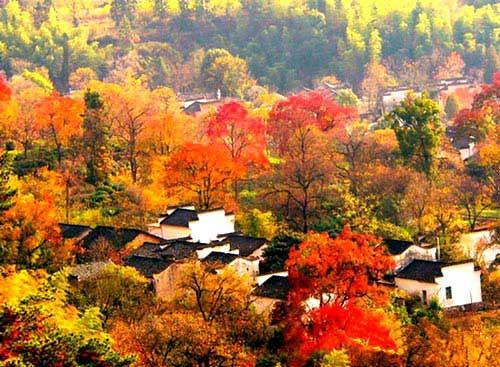 现在正是深秋季节,塔川的风景正是最美的.所以准备结伴同行.