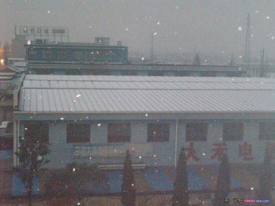 911sese站_大清早起来发现外面下雪啦