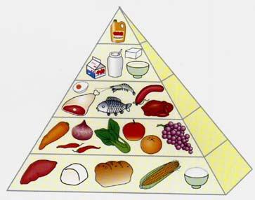 冬季合理饮食图片_冬天晚饭吃什么菜好_晚饭吃点什么菜_晚饭吃