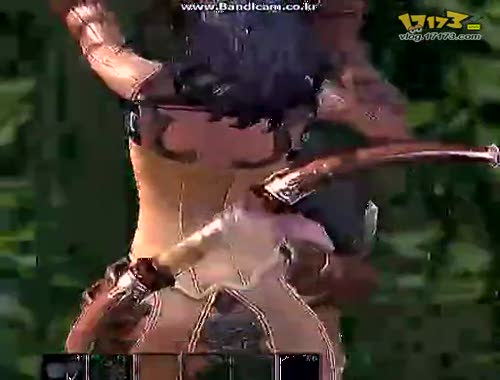 玩家自拍《tera》视频