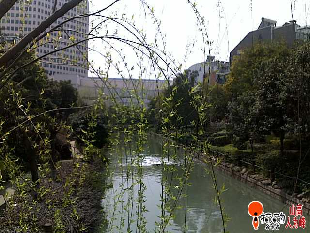 春天小河边风景图片