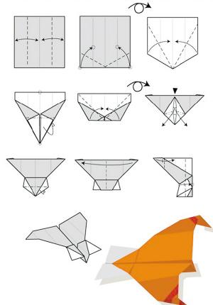 的折纸飞机大赛