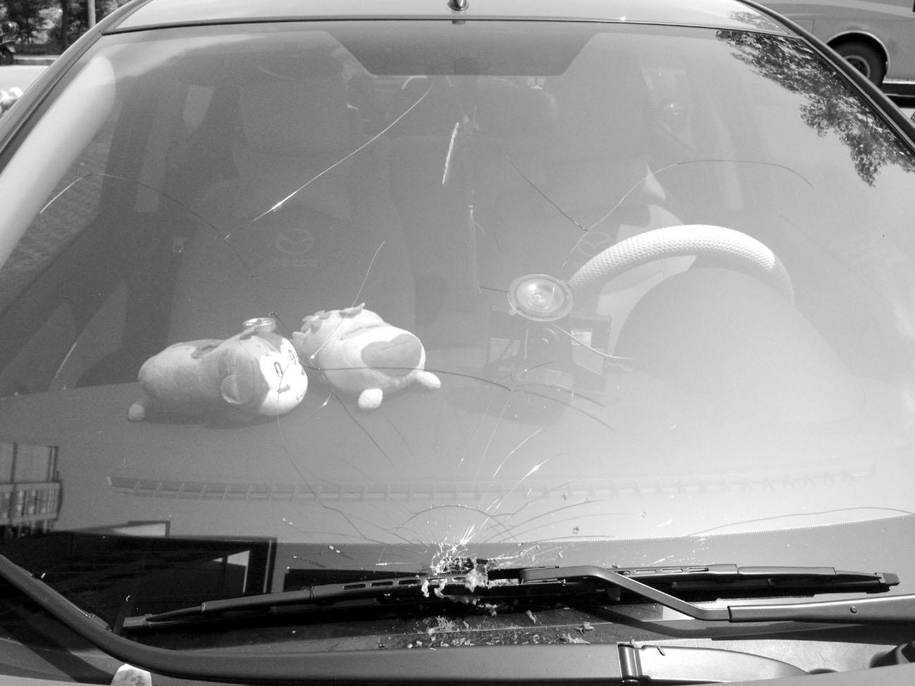 天降桃子砸中汽车挡风玻璃 肇事者无法找到