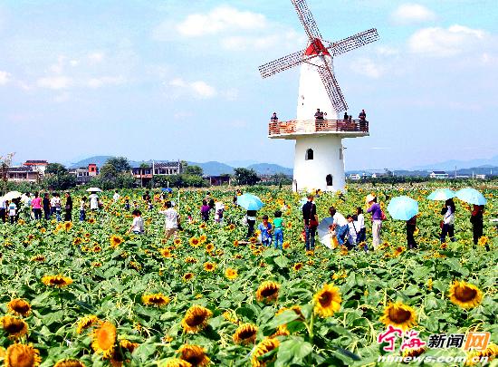 观光农业成为宁海县旅游业发展的一大亮点.