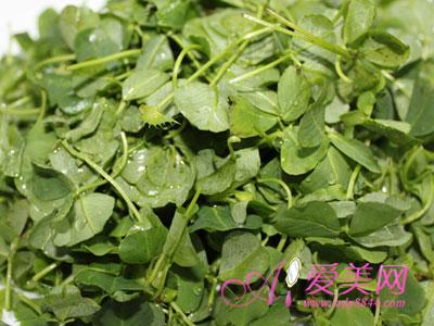 吃什么蔬菜对眼睛好 吃啥蔬菜对眼睛好 吃什么蔬菜才健康