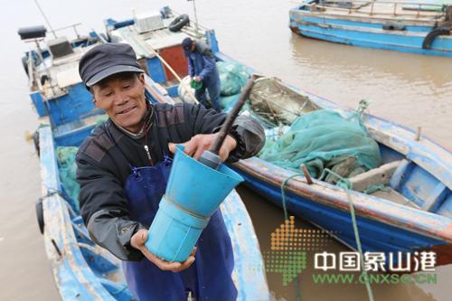 近海鳗鱼苗越来越稀少