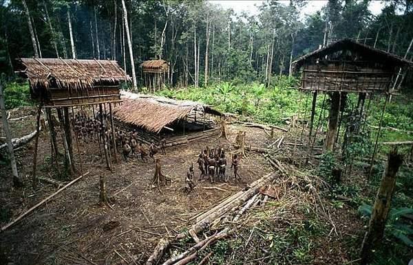 巴西原始部落 赤身女人母乳喂养野猪-原始部落