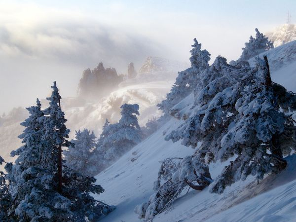 宁波冬天风景照