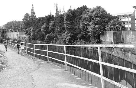 湖边欧式铁花栏杆
