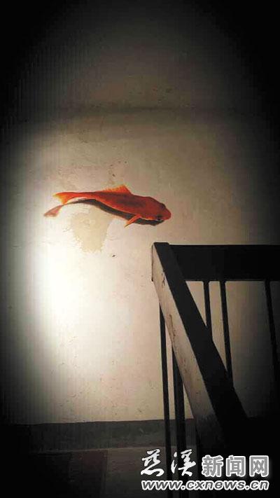再在背光面画上阴影,这条鲤鱼看起来就有立体效果了.