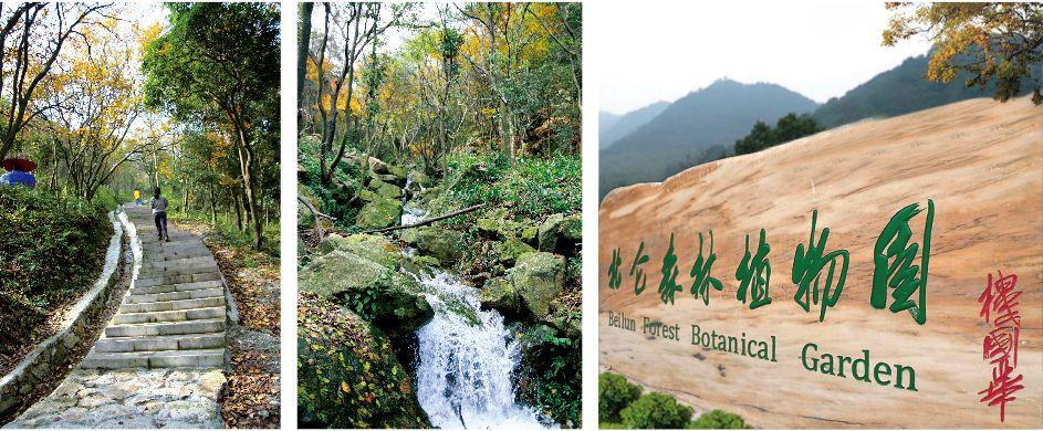 【游】北仑森林植物园--中国宁波网-旅游