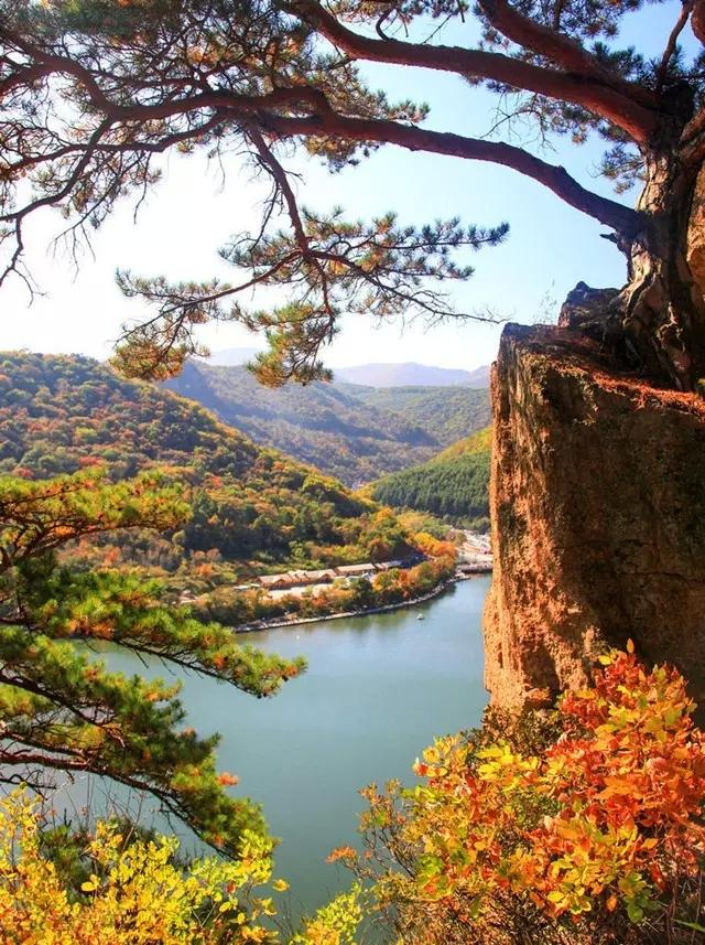 世界最美的楓葉風景