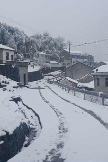 宁波大部分地区雨夹雪 四明山积雪较深_中国宁