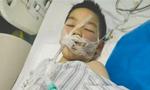 6岁男童18楼坠下奇迹生还 已能吃饭说话
