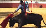 西班牙斗牛士抱着孩子斗牛