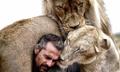 """""""狮语者""""与非洲狮子拍广告"""