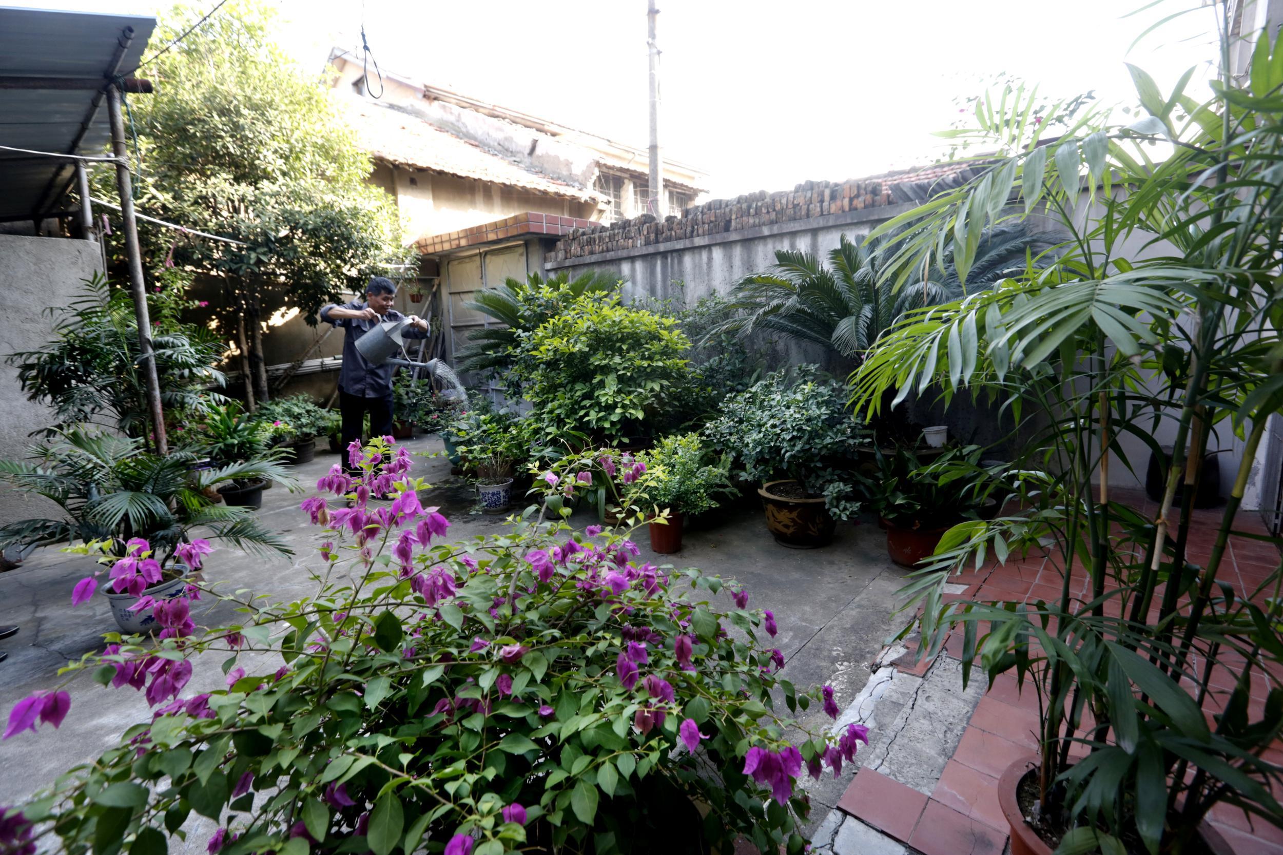 """摸索出了全镇首个""""农村庭院美化评比标准"""",把每户人家的庭院及公共"""