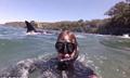 吓破胆!虎鲸与潜水者友好同游