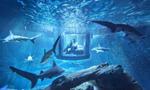 巴黎水族馆开放水下房间