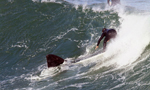 """冲浪选手海滩上演""""人鲸共舞"""""""