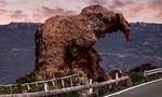 意大利古怪岩石酷似大象