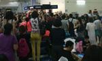越南机场否认殴打中国乘客:是否要小费还搞不清