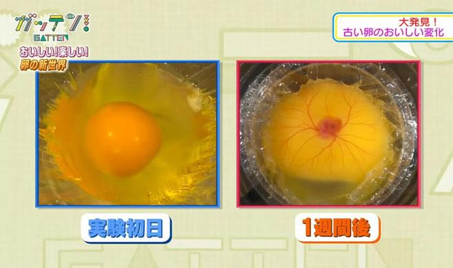 他们把鸡蛋打在杯子里 然后孵出了小鸡