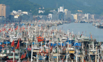 渤海黄海东海海域进入伏季休渔期