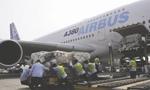 偷渡迪拜少年如何上了飞机 浦东机场调查