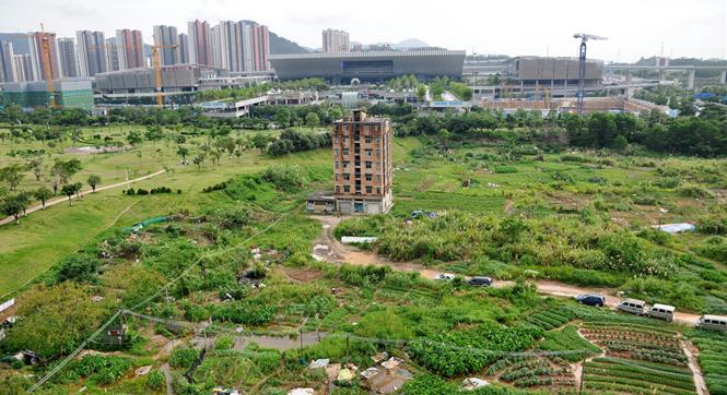 深圳钉子户坚守十几年成孤岛 曾拒2000万补偿