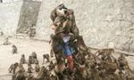 男子喂猴被猴群围攻