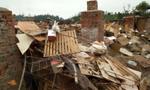 四川风灾 兔舍坍塌上万兔子被砸死