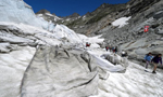 阿尔卑斯山最古老冰川被盖毯子 防止其融化