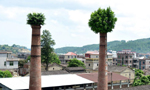 """福建泉州:烟囱""""戴绿帽"""""""