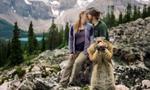加拿大情侣公园拍订婚照遭顽皮松鼠抢镜