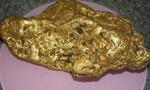 澳大利亚男子挖出8斤重金块 价值126万
