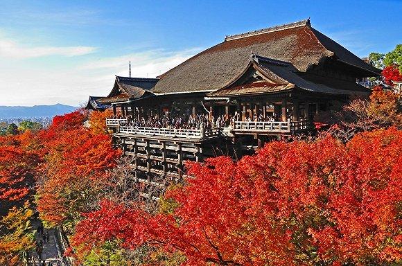 日本红叶季,请你走这两类赏枫线路