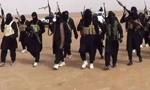 外媒:女子办私人反恐情报机构 打入IS内部揭黑幕