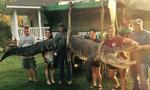 美国女猎手捕获4.3米长大鳄鱼