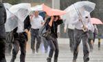 强台风横扫半个日本暴雨成灾 致36人伤2人失踪