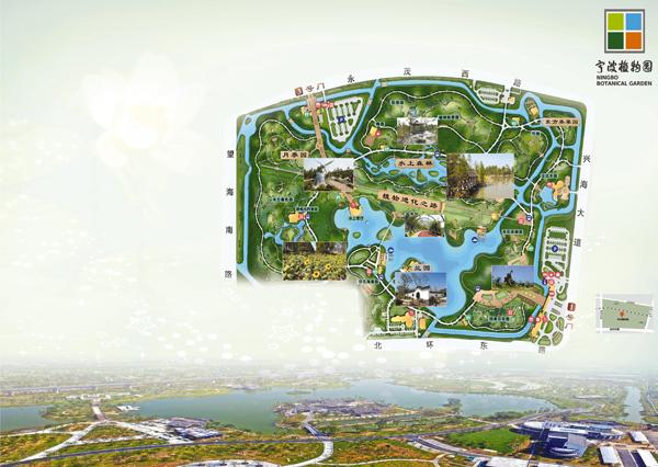 宁波植物园按规划分为科普观光植物区,体育休闲植物区和花卉园艺