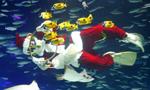 """水下""""圣诞老人"""""""