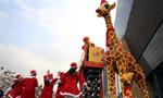 """积木长颈鹿戴""""圣诞帽""""成上海街头时尚风景"""