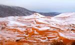 盘点:全球多个干旱地区罕见飘雪