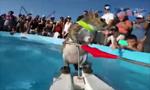 可爱松鼠玩冲浪 游上帆船手扶把手有模有样
