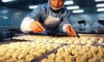 探访手工饺子厂 女工每天包出4000只饺子