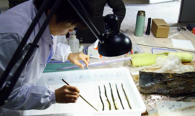 西汉海昏侯墓发现疑似失传千余年《齐论语》